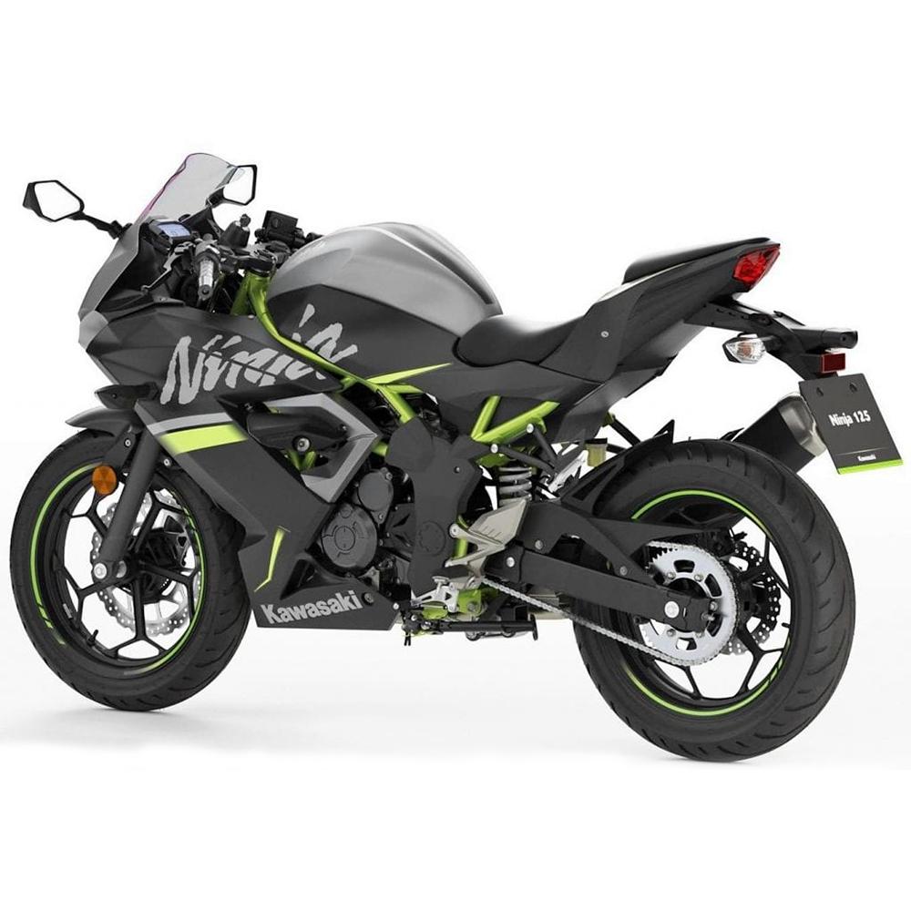 Kawasaki Ninja 125 ABS Back