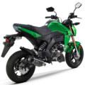 Kawasaki Z125 Pro Back